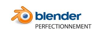 Logo Formation Blender Perfectionnement