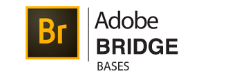 Logo Formation Bridge Bases