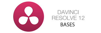Logo Formation Davinci Resolve Bases