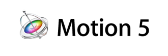 Logo Formation Motion 5