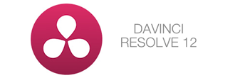 Logo Formation Davinci Resolve