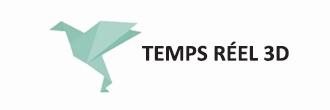 Logo Formation Temps Reel 3d