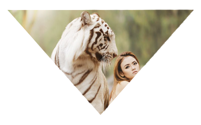 photographie montage triangle tigre et femme